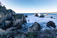 Point Lobos, December 2018 #6 (satoshikom) Tags: canoneos6dmarkii pointlobosstatenaturalreserve carmelbythesea carmel californiastateparks californiacoast canonef1635mmf28liiusm