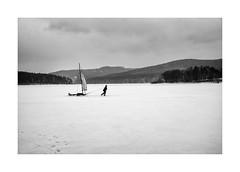 Sailboard (Paphylo) Tags: blackandwhite monochrome boy landscape winter atmosphere ice thepaintedbirdmovie snow lipno leicam10 lake frozen sailboard document 400asa