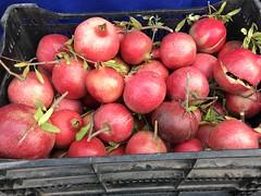 Pomegranates from Garden Of ..... (TomChatt) Tags: food farmersmarket