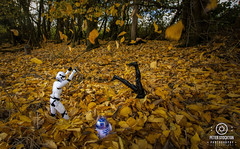 just for a bit of fun (kapper22) Tags: darth vader storm trooper leaves outdoor autumn fun toys figurines