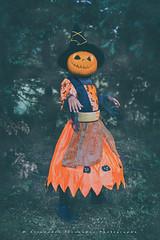Jack-o'-Witch (Alexandre66) Tags: france pyreneesorientales po perpignan 66 portrait 2018 sorciere jackolantern canon 5d mkiii 24105mm f4 l is usm couleur
