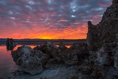 20140123_mono_lake_005 (petamini_pix) Tags: monolake california tufa sunrise lake reflection sky dramaticsky colorful beautifulsunrise clouds landscape water