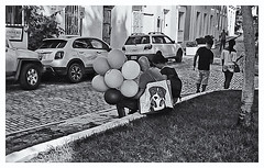 Fotografía Callejera (Street Photography) (Samy Collazo) Tags: pentaxauto1101978 pentax11024mmf28 pentaxmini pentax aristaedu100 110format formato110 smallformat formatopequeño sanjuan oldsanjuan viejosanjuan puertorico streetphotography fotografiacallejera bn bw