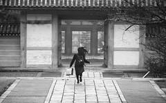 Kyoto street (Andrew Allan Jpn) Tags: ninnaji temple templegarden kyoto street streetfashion action decisive moment pentax pentaxart k3 travel japan japanesegirl highschoolgirl black white monochrome absoluteblackandwhite happyplanet asiafavorites