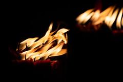 Leica DG 200mm f/2.8|Panasonic (里卡豆) Tags: 萬華區 臺北市 中華民國 tw 臺灣 olympus penf panasonicleicadg200mmf28 panasonic leica dg 200mm f28 olympuspenf