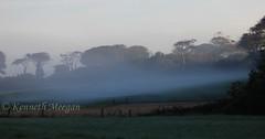 Tintern Abbey (Ken Meegan) Tags: tinternabbey saltmills cowexford ireland mist 2792015