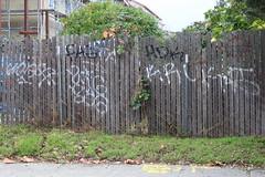 (nobammermane) Tags: bayarea graffiti pasta zigzag hdk kruks goes