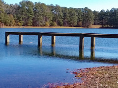 The Pond's Water Is Above The Dock. (dccradio) Tags: lumberton nc northcarolina robesoncounty outdoor outdoors outside nature natural pond water bodyofwater lake sky bluesky shore samsung galaxy smj727v j7v cellphone cellphonepicture park citypark lutherbrittpark tree trees landscape scenic december winter saturday morning goodmorning saturdaymorning waves ripples dock pier fishermensdock flood flooded flooding floodwater wood wooden