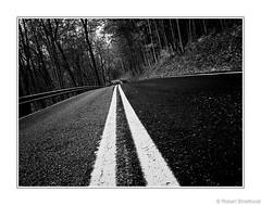 Take Me Home Country Road (Robert Streithorst) Tags: autumn country fall journey mono road robertstreithorst