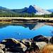 Tuolumne River Reflections, Yosemite 10-18