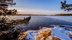 Matosaari, East-Helsinki, Finland  III (Esa Suomaa) Tags: helsinki sea winter water snow ice islands paradiseisland olympusomd