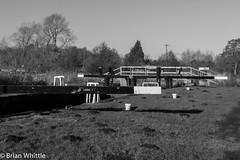 IMGP9350 (Brian H Whittle) Tags: blackwhite leedsliverpoolcanal rufford canal