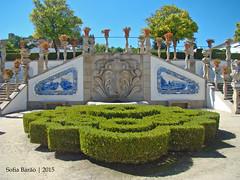 Jardim do Paço Episcopal, Castelo Branco 01 (Sofia Barão) Tags: portugal beira baixa jardim garden
