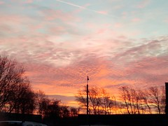 2019-02-05_07-43-51 (ste dee) Tags: sunrise morning winter sky colourfulclouds colourfulsky phonepic cellphone nature huawei silhouette