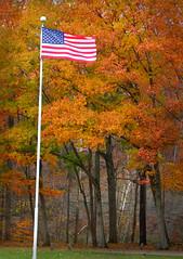 God Bless America (kuddlyteddybear2004) Tags: godblessamerica freeandfairelections memorialday veteransday armedforcesday grandriver harpersfield ohio fall autumn