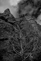 2018-11-17_Otetatopu_5_web (Rojobin) Tags: rockclimbing sports bankspeninsula newzealand nz crags landscapes cloudy otepatotu
