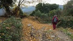 Monte Oribio desde Lóuzara (Roteiros Galegos) Tags: senderismo sendeirismo galicia triacastela paisaxe paisaje monteoribio serradooribio montaña lóuzara gudriz caurel courel