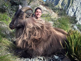 New Zealand Trophy Red Stag Hunting - Kaikoura 53