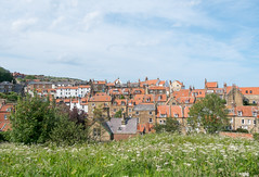 Rooftops (Greg.w2) Tags: uk england north yorkshire robin hoods bay 2017 fuji finepix xe1 summer houses old rooftops coast june