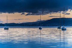 The Morning Blues with Boats (Merrillie) Tags: daybreak sunrise nature australia drizzly tascott overcast boats nsw newsouthwales wet koolewong morning brisbanewater dawn cloudy water landscape earlymorning coastal clouds sky waterscape bay centralcoast outdoors foreshore