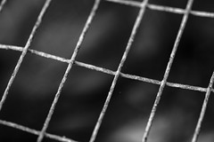 Rusty Grill (adamopal) Tags: canon canon7d canon7dmarkii canon7dmkii grate rustymetal texture rusttexture backgroundblur blur diagnal macro macro100mm 100mm monochrome blackandwhite blackwhite black white