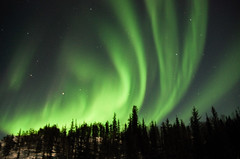 March Madness-162 (juan_guthrie) Tags: yellowknife nwt northernlights