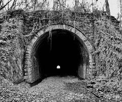 Old Usk Railway Tunnel (Hammerhead27) Tags: arch lightattheend olympus monochrome mono bw blackandwhite pasttime industrial rail railroad railway usk wales abandoned disused old entrance tunnel
