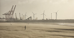 Moving Sands (Eddie Hyde ARPS) Tags: anotherplace crosby landscape storm wind sandstorm beach mersey merseyside