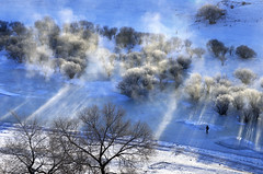 Icy River 冰河 (MelindaChan ^..^) Tags: innermongolia china 内蒙古 icy river tree steam sun shine plant nature chanmelmel mel melinda melindachan 冰河 冰 河