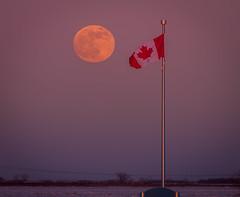 Canadian Super Moon (skram1v) Tags: supermoon rise canada clear cold richardson flag jan2019 winnipeg snow farmland