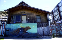 Hunting for graffiti (Francesco Pesciarelli) Tags: puertomontt chile graffiti matiaqeu matiaqea wolf moon fox night windows home street art painting spraying pesha flickr francescopesciarelli