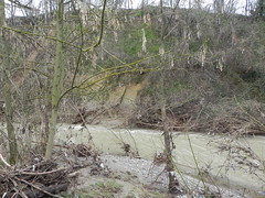 DSCN9958 (Gianluigi Roda / Photographer) Tags: springtime april 2013 creeks savena flood rainflood