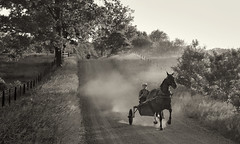 SPEEDING TO GET HOME BEFORE SUNSET: no worry for a speeding ticket in the Amish land (outside of Goshen, IN) ! (Charles R. Yang) Tags: amish sony rx100 sonyrx100 indiana goshen dusk horse
