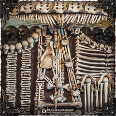 In the very last addition to the coat of arms, hiding in the top center portion, one can discern a crowned lion rampart standing on two paws (made from two scapula, clavicle, and other various bones), three flying alerions (made from vertebrae), and an up (Sedlec Ossuary Project) Tags: sedlecossuaryproject sedlec ossuary project sedlecossuary kostnice kutnahora kutna hora prague czechrepublic czech republic czechia churchofbones church bones skeleton skulls humanbones human mementomori memento mori creepy travel macabre death dark historical architecture historicpreservation historic preservation landmark explore unusual mechanicalwhispers mechanical whispers instagram ifttt