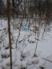 candy on snow (frigida66) Tags: bjd dollchateau