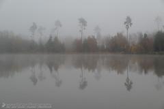 Reflections of a misty world (Christian Birzer) Tags: spiegelung jahreszeit nebel wald herbst see landschaft teich autumn fall fog forest lake mist pond reflection season
