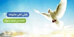 Al Amana Microfinance recrute des Agents Polyvalents (dreamjobma) Tags: a la une al amana microfinance emploi et recrutement casablanca chargé de clientèle finance comptabilité gestion rabat