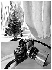 """My new """"old"""" Kodak (series 7) lens hood, looks cool 😎 (though it almost doubles the size of my nice and small OM2n film camera, oh well I'll leave it on for a little while.,.before being sensible with a modem skinny black Olympus one... (Tony Roman Photography) Tags: om2n blackandwhite"""