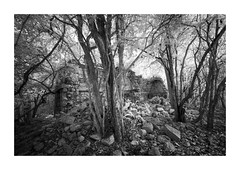 Kom (Sandra Herber) Tags: infrared kom maya mayan mexico ruins yucatan
