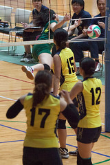 20180512_IMG_7364 (ko_en_volleyball_para) Tags: スポーツ sports バレーボール volleyball パラ para 聴覚障害 deaf the 18th national disabled competition hearing impaired area preliminary 2018 第18回 全国障害者スポーツ大会聴覚障害者バレーボール競技 地区予選大会 大田区体育館 otacity general gymnasium 栃木 tochigi 東京 tokyo