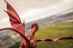 Dragon Age (2018) #TBT (Ballou34) Tags: 2017 7dmark2 7dmarkii 7d2 7dii afol ballou34 canon canon7dmarkii canon7dii eos eos7dmarkii eos7d2 eos7dii flickr lego legographer legography minifigures photography stuckinplastic toy toyphotography toys édimbourg scotland royaumeuni gb stuck in plastic dragon age game of thrones got flight sky