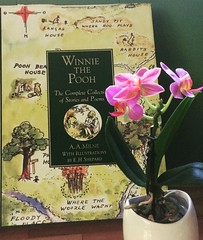 Books and Flowers (marsh_maureen) Tags: book winniethepooh flowers orchid pink literature milne
