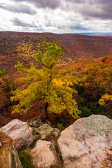 MCZ_2240 (markczerner) Tags: landscape outdoors fall colors fallcolors autumn orange red trees nature river coopers rock coopersrock statepark park west virginia wv wva countryroads country roads cheatriver valley mountains forest