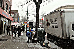 Winter Fall (The Rose) (Robert S. Photography) Tags: street scene snow winter storm flowers falling windy slippery brooklyn nyc sony dsch55 color iso640 january 2019