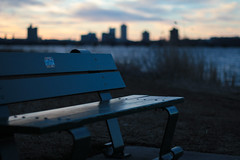 Park bench by the Charles River in winter (antonius delta) Tags: park twilight green grass river skyline seat bench 60d canon60d canon evening cold winter charlesriver bostonjanuary2019