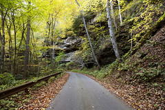 Picturesque but slender road to Nuttallburg, a ghost town that was once one of about 50 places that sprang up in the deep West Virginia forests. Original image from Carol M. Highsmith's America, Library of Congress collection. Digitally enhanced by rawpix (Free Public Domain Illustrations by rawpixel) Tags: otherkeywords tags america american attraction background carolhighsmith carolmhighsmith cc0 fayettecounty forest forests ghosttown highway landscape location name natural nature nuttallburg outdoors picturesque road route rural scene scenic street tourism transportation travel unitedstates unitedstatesofamerica us usa view wallpaper westvirginia woods