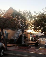 007 A Decorated Tree (saschmitz_earthlink_net) Tags: 2018 california marinadelrey boat parade marinadelreyboatparade christmasparty suez