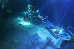 """LEGO CITY: Deep Sea Adventure submarine ride. • <a style=""""font-size:0.8em;"""" href=""""http://www.flickr.com/photos/28558260@N04/46297875151/"""" target=""""_blank"""">View on Flickr</a>"""