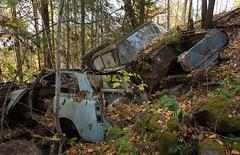 Opel Rekord & Austin A40 (mariburg) Tags: rotten marode alt old rostig rustycars canonef2470mmf28liiusm opel austin