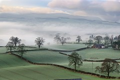 Chilly Morning! (vincocamm) Tags: hedge hedgerow green mist misty house farm farmland agricutral lines fog foggy cold cumbria edenvalley morning nikon d5500 sigma 1770mm england uk frost frosty winter